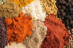 medicinal plants and aromatic varieties of spices and grain, herbs, dates, sesame seeds and all agricultural products in Egypt