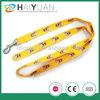 custom printed dog leash with carabiner hooks