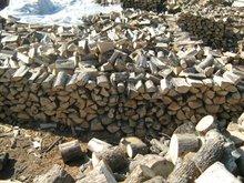 firewood BULGARIA