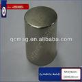 magnetizzato diametralmente magneti cilindro