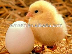 beta-glucanase enzyme for animal feed