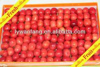 Delicious red cherries in good taste & low price