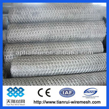Chicken Mesh Straight twisted hexagonal wire cloth