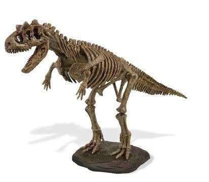 Dino KIT de excavación - CARNOTAURUS esqueleto