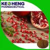 Antibiotic natural fruit extract Pomegranate extract/Pomegranate peel extract