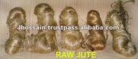 Sale Raw Jute : The Golden Fibre