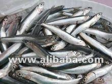 kroccan Fishmeal