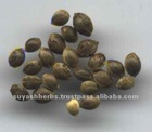 Cheapest Price 100% pure Hemp Seed Oil