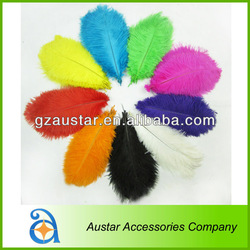 High quality Colorful Ostrich Feather