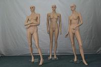 sexy breast women model