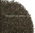 orgánica del té verde