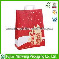 Beautiful Paper Christmas Gift Bag