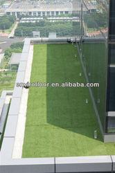 grass for roof garden