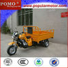 2013 Hot Sale Chinese Popular Cheap Cargo Air Cooler 150CC Cargo Motor Trike