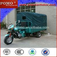 2013 Chinese Motorized Gasoline Hot Sale Cheap Cargo 250CC Three Wheeler Trike