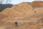 Acacia and Eucalyptus Wood Chips High Quanlity