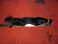 asian human hair