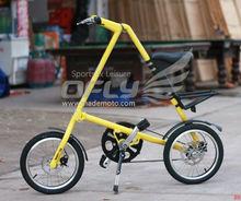 Hot Selling CE Folding Magnetic Bike