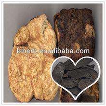 100% Pure Polygonum multiflorum root Extract
