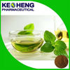 High quality Green tea extract with 40%-98% Tea polyphenol