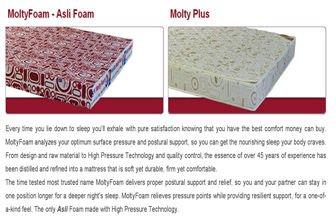 MOLTY FOAM - ASLI FOAM & MOLTY PLUS MATTRESS