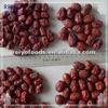 Dreid date exporter in China best sale 2013 new crop