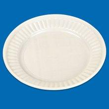 Disposable plastic plate (white)