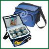 Polyester cooler bag for frozen food,beer can cooler bag,disposable cooler bag