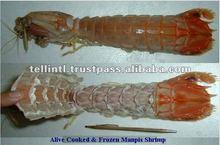 Frozen Manpis Shrimp For Sale