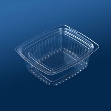 Disposable plastic sald tub with lid