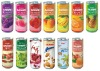 &quot;Flavours of Sammi&quot; Fruit juice with fruit pieces 240ml Series