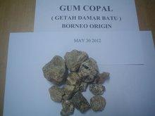Gum Copal ( getah damar batu )