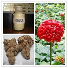 Natural Pure Radix Notoginseng P.E. Total Ginsenoside