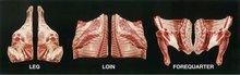 Lamb Carcase