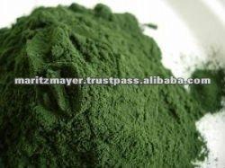 Green Supplement Powder