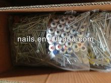 Best metal galvanized pallet nails(factory)