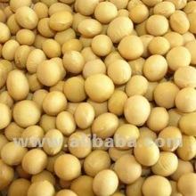 Soya Bean (Fresh, Dried)