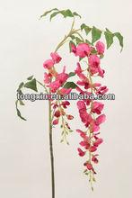 single stem flowers factory wisteria flower
