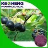 Organic 10:1 Acai Berry Extract / Anthocyanin 5%-70%