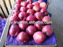 Huaniu red apple