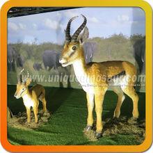 Life-size fiberglass animal model