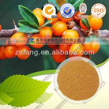 Seabuckthorn Fruit Extract Powder (Food grage)
