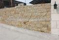 mousse mur de pierre