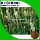 Black Cohosh Extract/Triterpenoides Saponis for Dubai