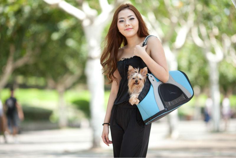 น้ำหนักเบากระเป๋าถือสำหรับสัตว์เลี้ยง