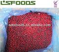 الصينية الجديدة المحاصيل iqf مجمدة 2013 التوت البري