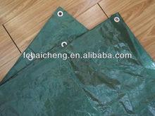 Camping equipment pe groundsheet tarpaulin 12*15ft green