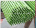 Very Rigid Reinforced Plastic Stake