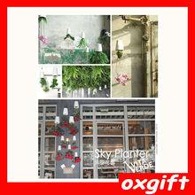 oxgift Boskke Extra Small Ceramic Sky Planter