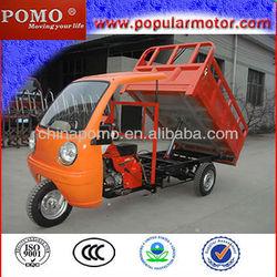 2013 Hot Cheap Gasoline Motorized 250CC Popular Cargo Chinese Three Wheel Motorcycle Dealer